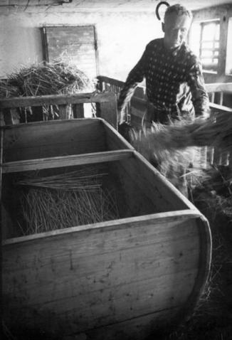 Oljet suodattavat mäskistä vierteen. Kuva vuodelta 1974. ©Kankaanpään